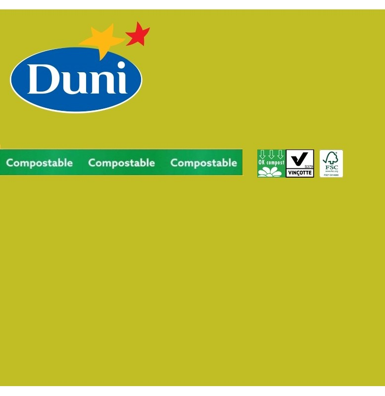 Салфетки бумажные Dunilin, цвет: киви, размер 40 х 40 см, 12 штук