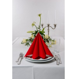 Салфетки бумажные Dunisoft Airlaid, цвет: Красный, размер 40 х 40 см, 60 штук